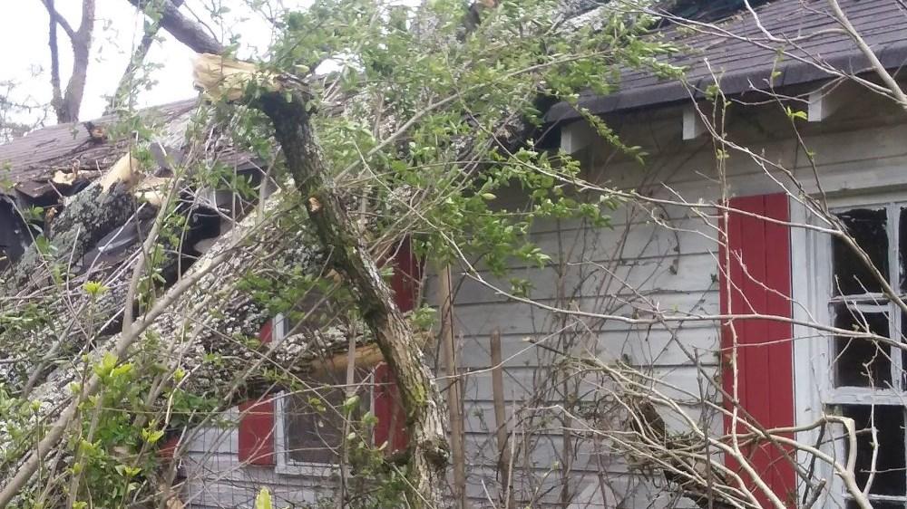 Diana Raney said a tree fell onto her home. (SOURCE: GoFundMe Page)