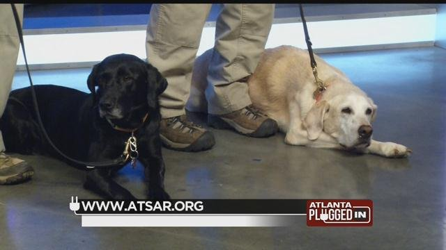 Alpha Team K9 Search and Rescue