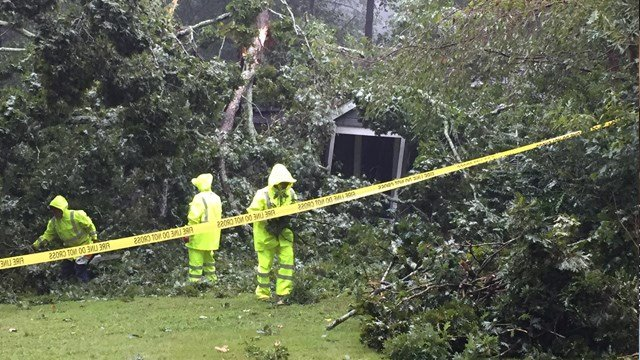 Hurricane Irma downed several trees in the metro area on Monday. (Source: CBS46)
