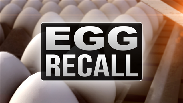 35 cases of salmonella linked to egg recall