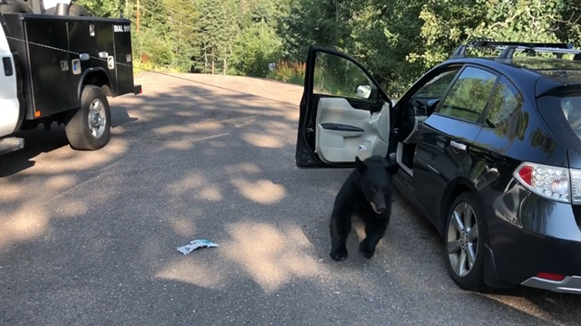 Source: Jefferson County, CO Sheriff's Office Facebook