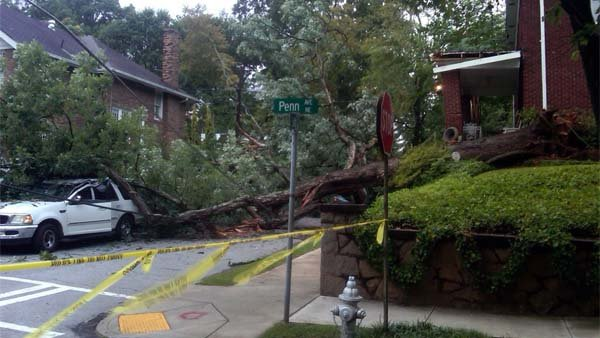 Rebekka Schramm/CBS Atlanta- A tree fell in midtown Atlanta, narrowly missing the driver early Thursday