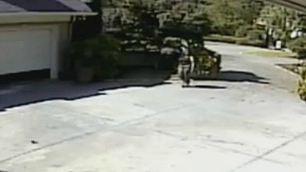Surveillance video of burglar on Northside Drive