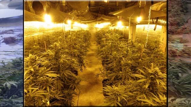 alpharetta ga cbs46 police in alpharetta seized 188 pounds of ...