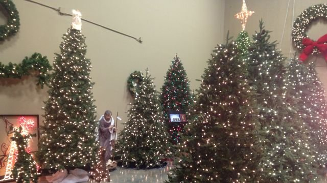 Macy's breaks tradition with artificial tree - CBS46 News