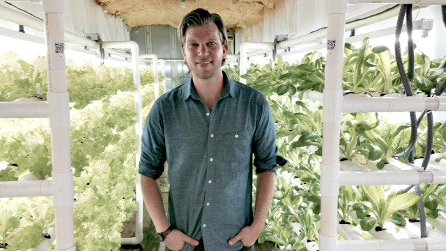 Adam Johnston, farm manager of PodPonics, grower of Lettuce Buy Local