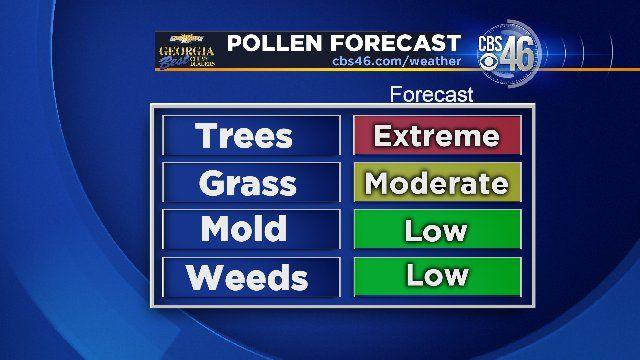 allergy forecast boston