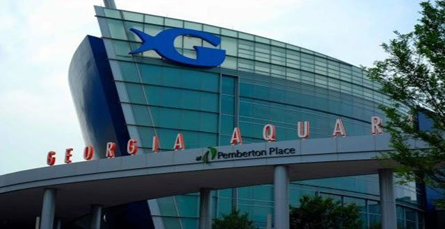 Animal Rights Group Protests Outside Georgia Aquarium